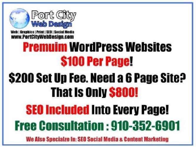 $100 Affordable WordPress Design