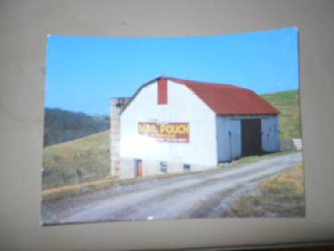 $12,000 MAIL POUCH BARN >>>>>the LAST one ever painted