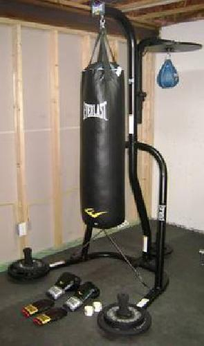 170 Everlast 100lb Punching Bag Kit W Stand Sd And Gloves