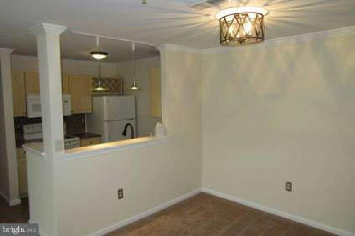 1715 Braken Ave Wilmington, Newly updated Two BR/Two BA condo in
