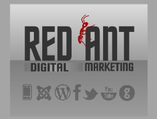 $199 Custom Business Website Design Starting at