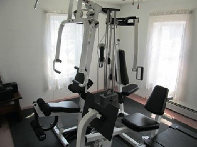 Best Gym Lognip