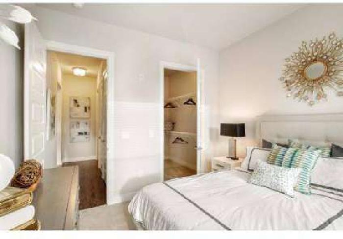 1 Bed - 555 Ross Avenue