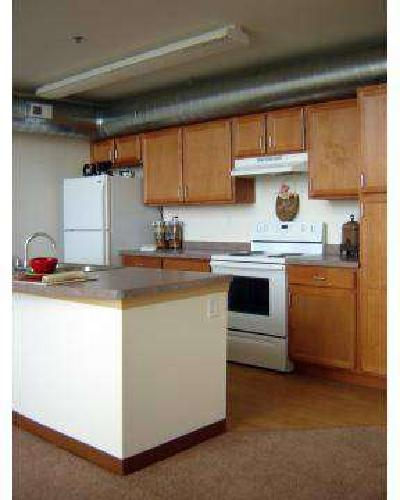 1 Bed - Blue Ribbon Loft Apartments