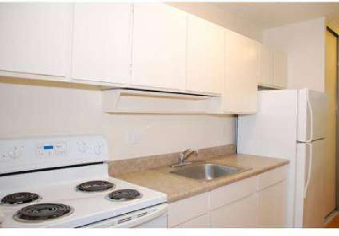 1 Bed - Coronado Springs Apartments