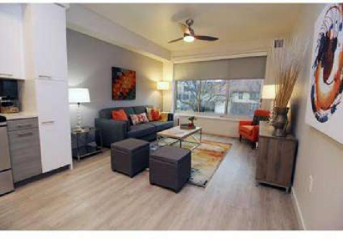1 Bed - Eviva Midtown