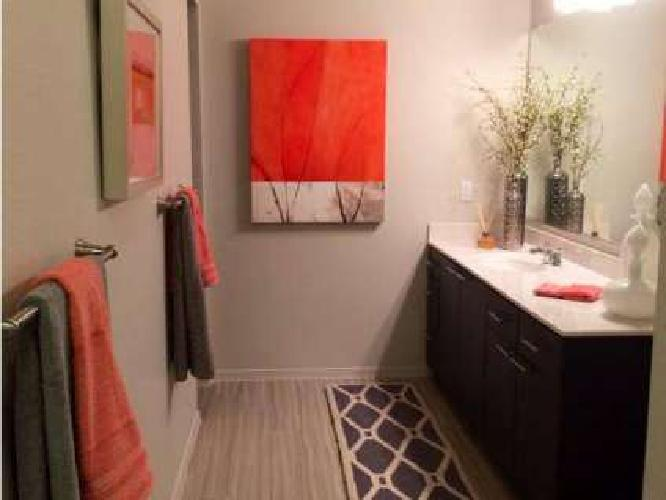 1 Bed - Liv Ahwatukee - NOW OPEN