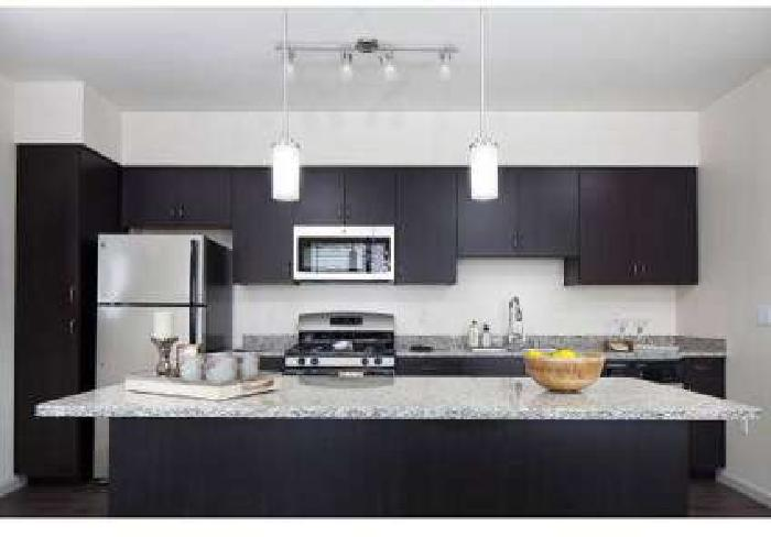1 Bed - Pulse Millenia Apartments