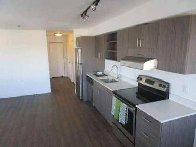 1 Bed - The Hudson