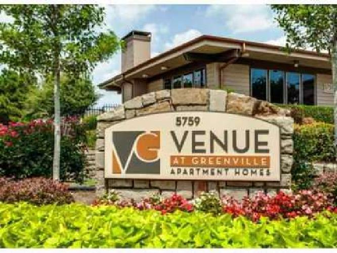 1 Bed - The Venue at Greenville