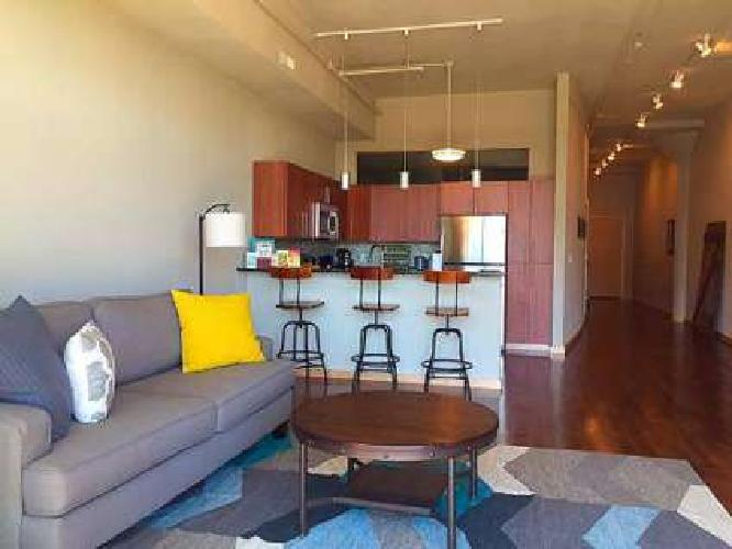 2 Beds - South Water Works Milwaukee Apartments