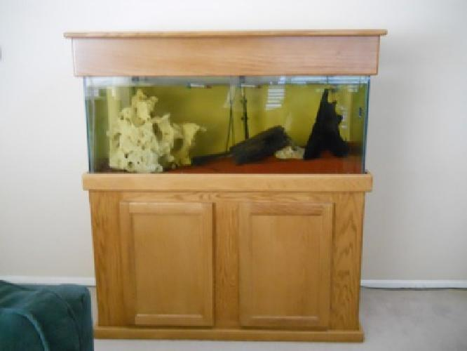300 75 gallon fish tank for sale in lewisville texas for 300 gallon fish tank for sale