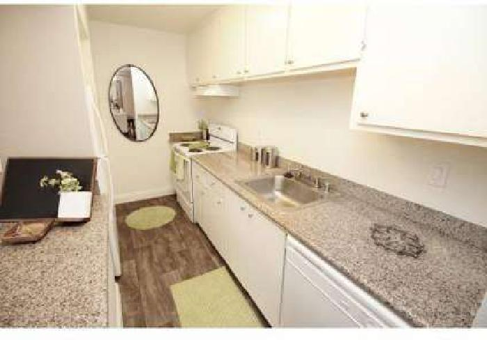 3 Beds - Wedgewood Apartments