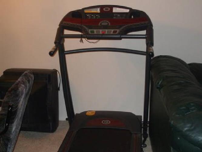 treadmill dog small