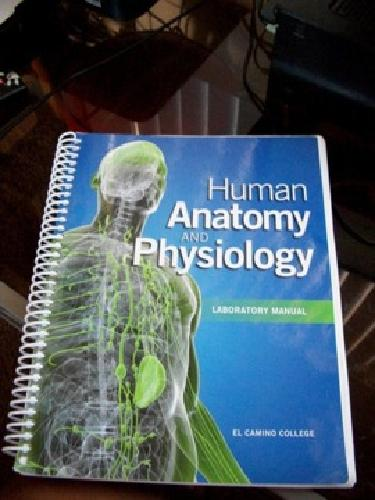 $50 Used Human Anatomy and Physiology Lab Manual