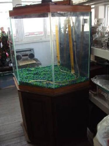 75 octagon fish aquarium with stand and accessories for for Octagon fish tank with stand