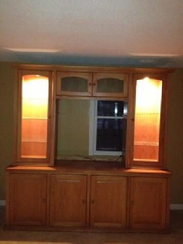 $80 Lighted Entertainment Center