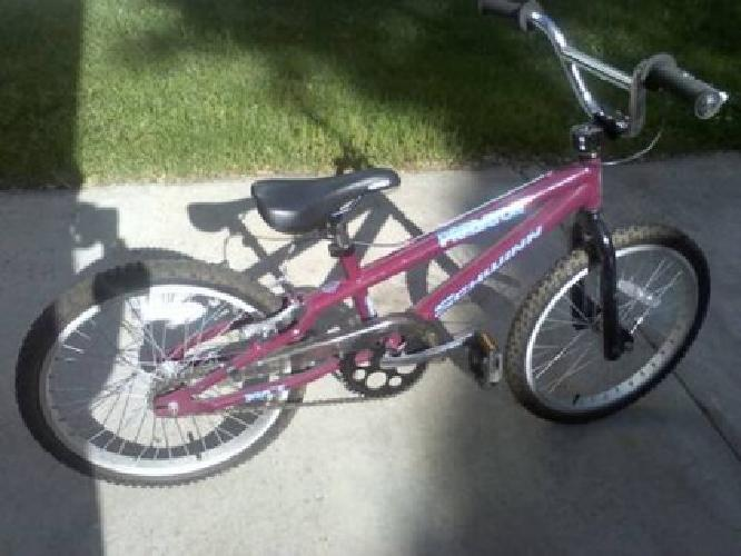 Bikes For Sale In Holland Mi Girls SCHWINN Predator Bike