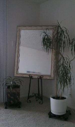 $99 Mirror