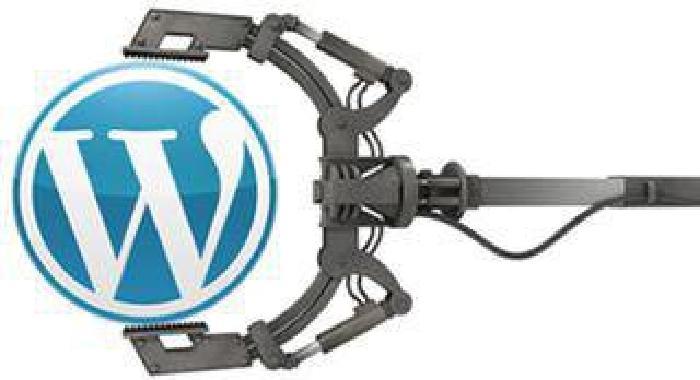 Affordable WordPress Development Service