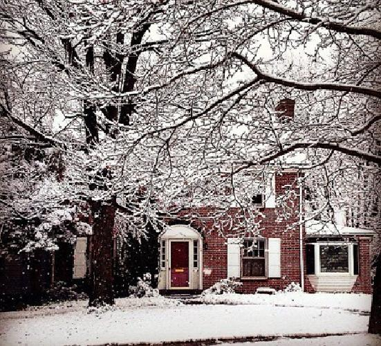 Beautiful Brick House in Downtown State College