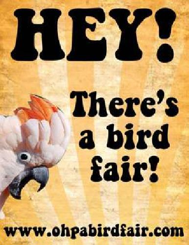 OHPA Bird Fairs! Largest Fair in Western Pennsylvania