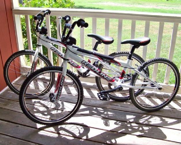 Redline BMX Race Bike- Flight Expert- 19