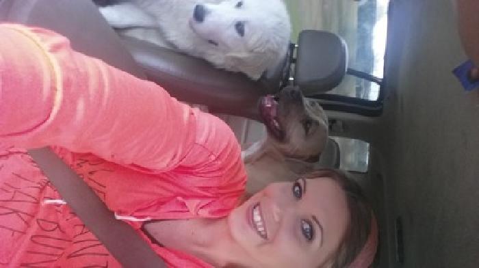 Tara's pet transportation