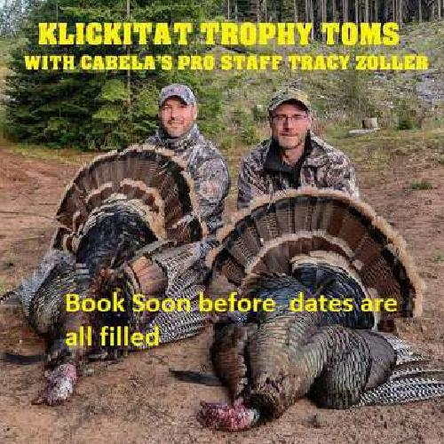 Turkey Hunt and Lodging Guided 1000s private Acres