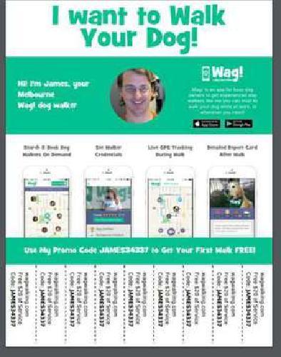 Wag Dog Walker